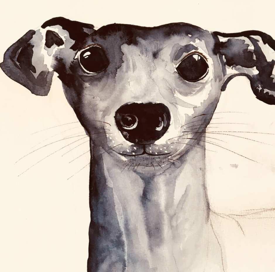 Das fertige Aquarellbild Der blaue Karfunkelhund ist nun zu sehen