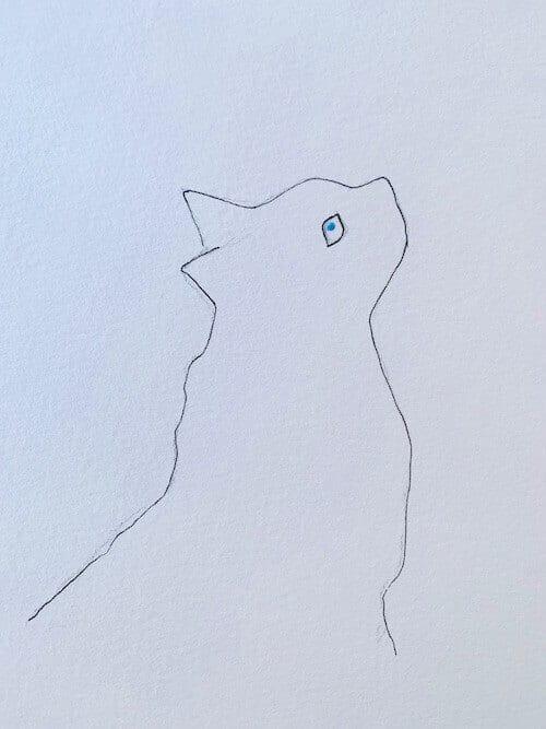Die Außenlinie der Katze wird in schwarzem Mikro-Fineliner gezeichnet