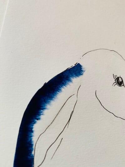 Man sieht ein Detail des Osterhasen, hier das Ohr mit indigoblauer Farbe