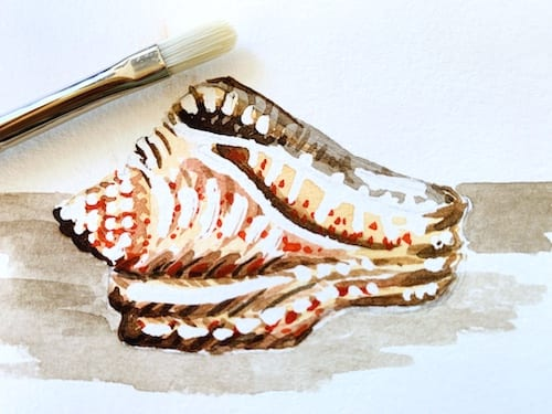 Du siehst den weggerubbelten Rubbelkrepp. Nun ist es Zeit die Muschel mit Aquarell zu malen.