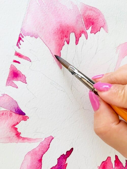 du siehst die Farbschicht rosa für das Aquarell der Pfingstrosen