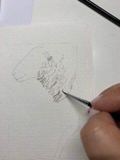 du siehst wie ich das Schaffell male