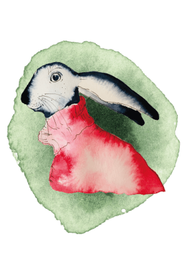 Die Osterkarte Leporello besteht aus sechs handgemalten Illustrationen: Du siehst die Osterhäsin Annabelle