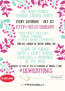 lil-wild-things