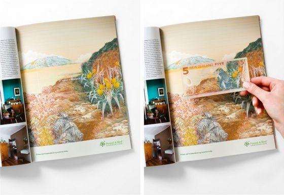 print-forest-bird-new-zealand-money