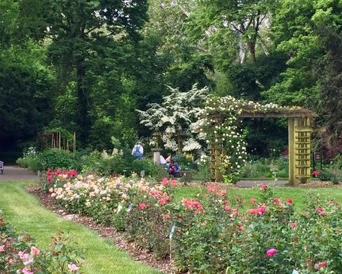 Whetstone Park of Roses