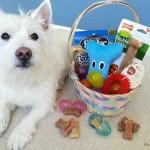 DIY Easter Basket for Dogs