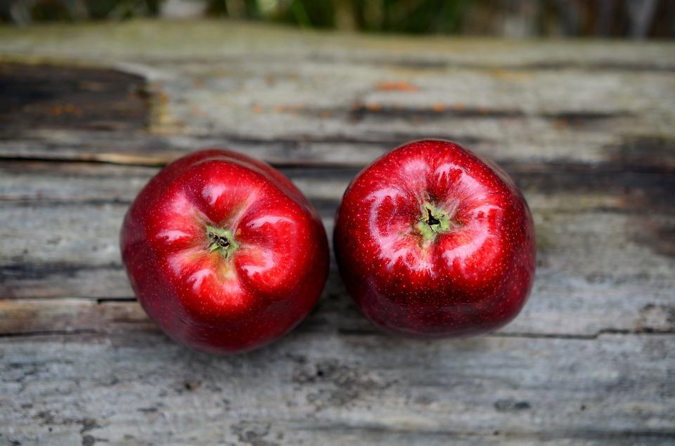 apple recipes, crafts, activities