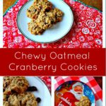 Chewy Oatmeal Cranberry Cookie Recipe