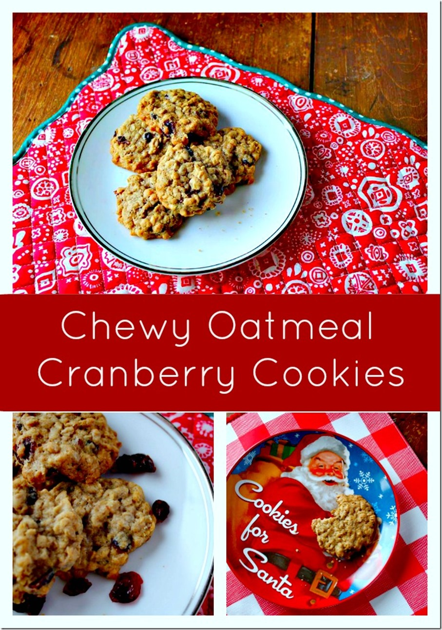 Chewy Oatmeal Cranberry Cookies Recipe With Variations