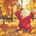 Fun Fall Day Trips to Take This Year in Southwestern Ontario