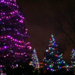 Garvan Gardens Arkansas Holiday Lights