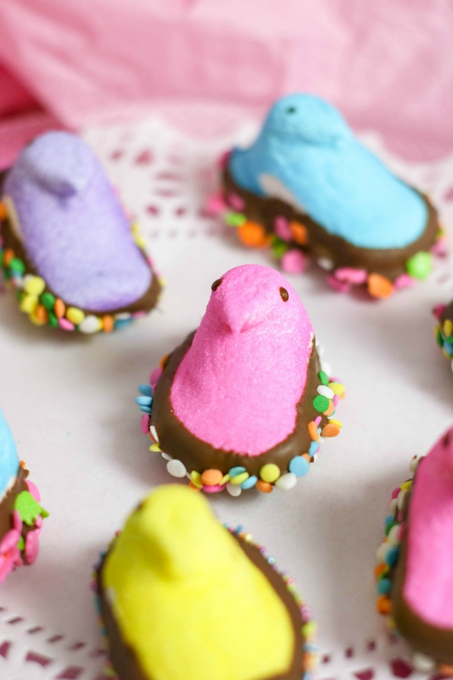 marshmallow Peeps dipped in chocolate