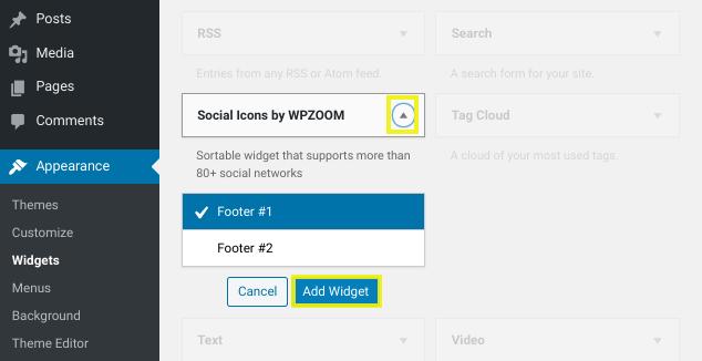social footer widget