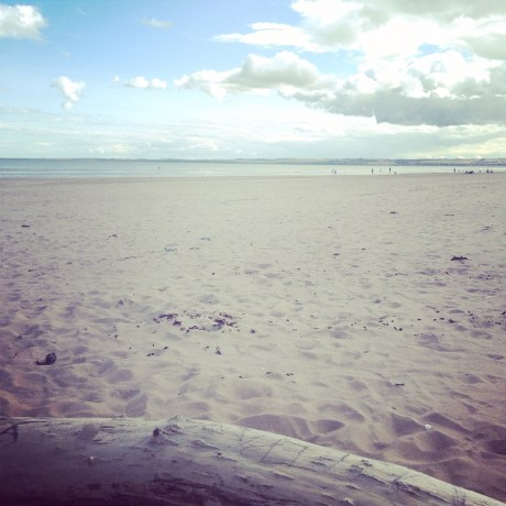 beach, scotland, tentsmuir, view, landscape, fife, dundee, cycling