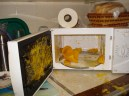 picture of squash exploded in microwave