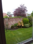 View of the garden from mum's lounge