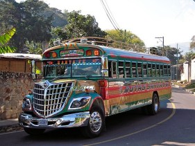4.1261834620.colorful-bus