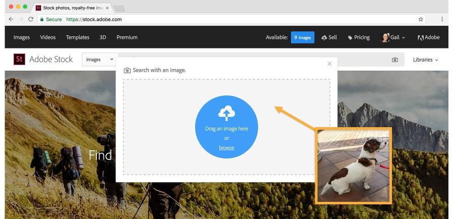 adobe stock ai visual-reverse-image-search_1