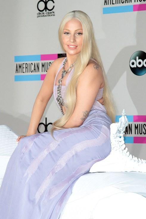 CA: 2013 American Music Awards Red Carpet - Arrivals