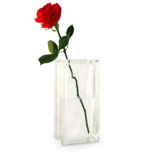 Tall glass vase with single red rose