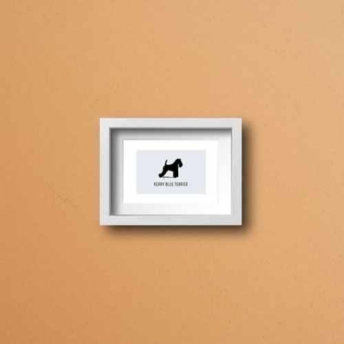 Láminas Kerry Blue Terrier