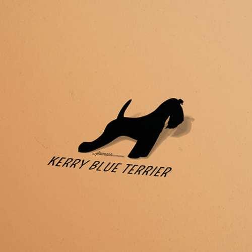 Pegatinas Kerry Blue Terrier