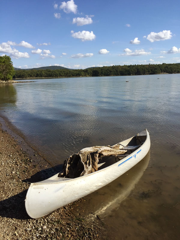 A piece of driftwood in a canoe