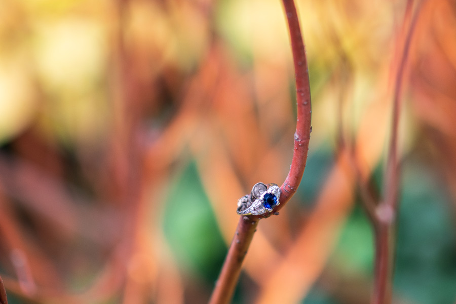 engagement ring with blue stone sits on a red plant