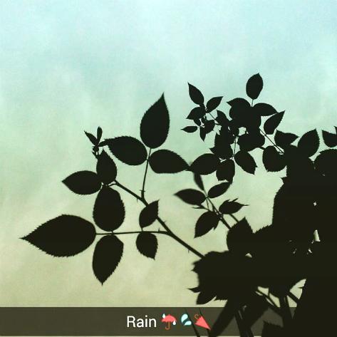 snapchat-pakistan