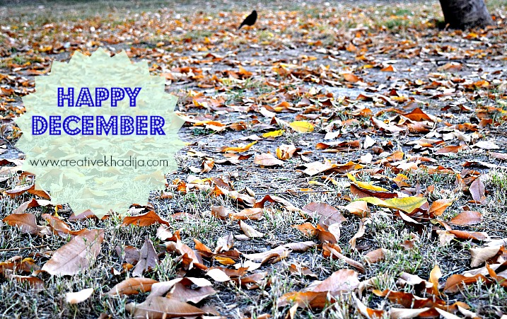 happy december and fall photography