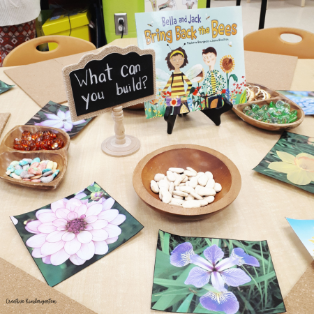 Provocations for learning in kindergarten and how to plan for the learning that is developmentally appropriate for your students.