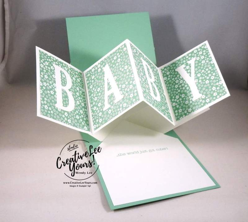 Twist and Pop Baby by Sheila Tatum, Stampin Up, Something for baby, #creativeleeyours,Babays first framelits, diemonds team meeting
