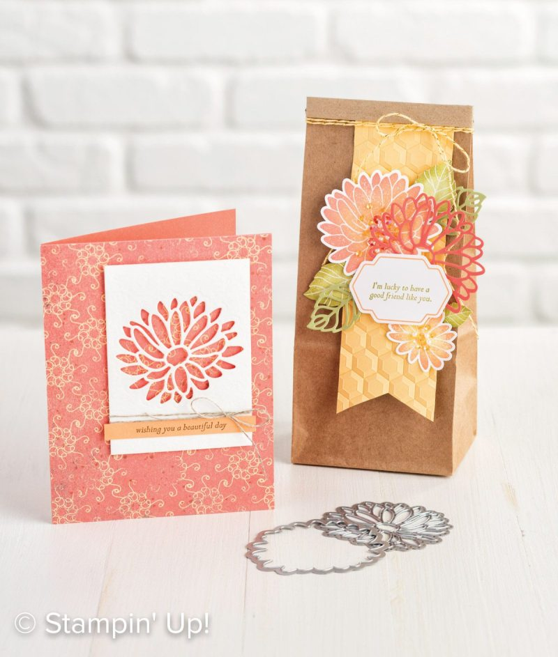 Stylish Stems Framelits Dies and Special Reasons Stamp Set , Video, #creativeleeyours, creatively yours,