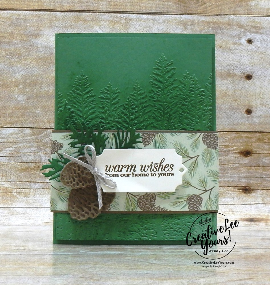 Thank You Pouch Gift Card Holder by wendy lee, BONUS, stampin up, stamping, SU, #creativeleeyours, creatively yours, creative-lee yours, #cardmaking, #handmadecard, #rubberstamps #stamping, friend, celebration, congratulations, thank you, hello, grateful, thinking of you, birthday, Christmas, poinsettia, holiday, fun fold, stamping, DIY, paper crafts, #papercrafting , #papercraftingsupplies, #papercraftingisfun , FMN, forget me not, card club, class, poinsettia petals stamp set, #makeacardsendacard ,#makeacardchangealife, ,#tutorial ,#tutorials, evergreen forest, beautiful boughs gift card holder
