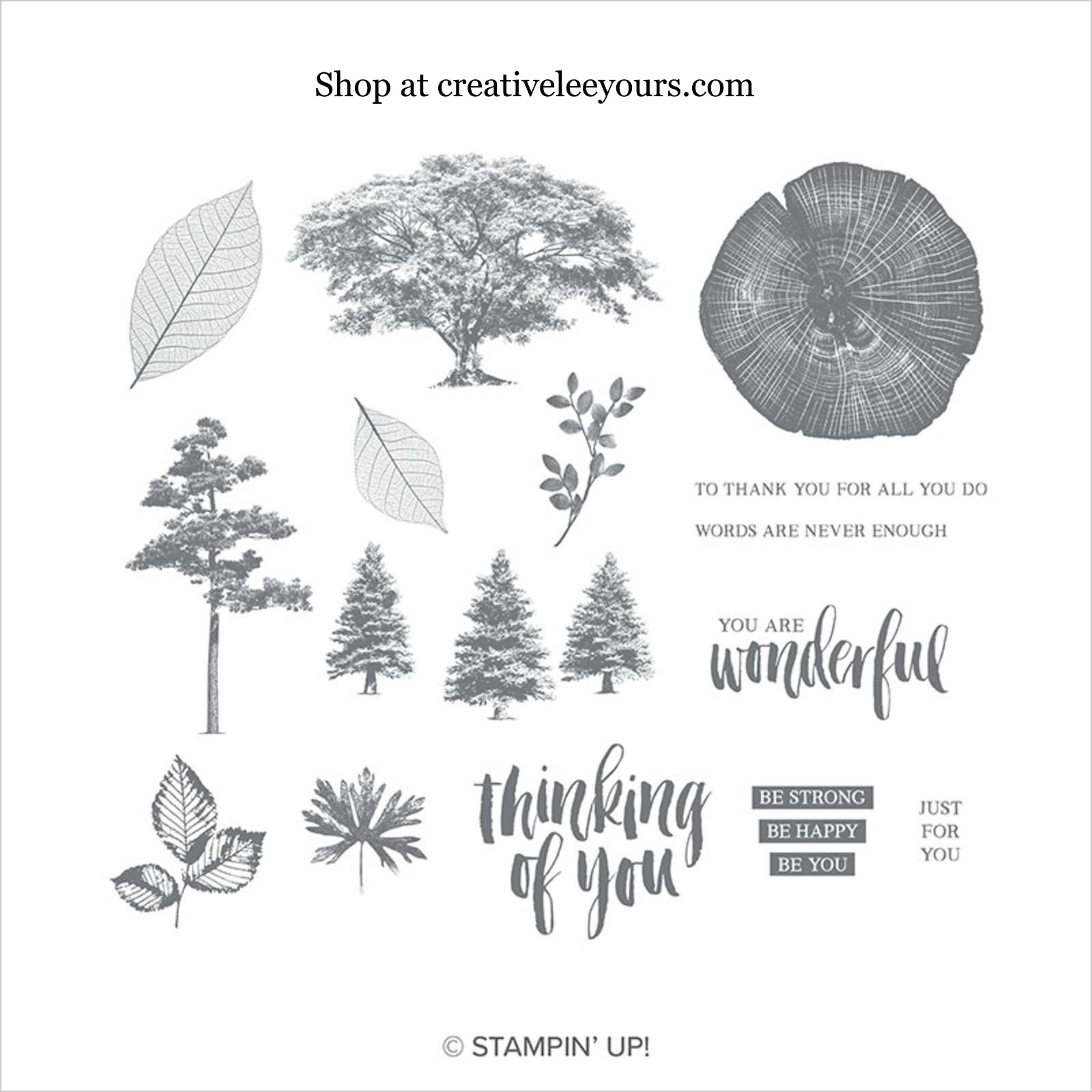 Fond Farewell to Rooted In Nature by Wendy Lee, Tutorial, card club, stampin Up, SU, #creativeleeyours, hand made card, thankful, gratitude, sympathy, watercolor, birthday, pattern paper, stamping, creatively yours, creative-lee yours, winter woods stamp set, kindness & compassion stamp set, DIY, masculine, tree, fall, #stampinup , #su , #stampinupdemonstrator , #cardmaking, #handmadecard, #rubberstamps, #stamping,