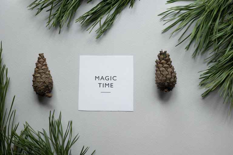 composition of pine cones with greeting card
