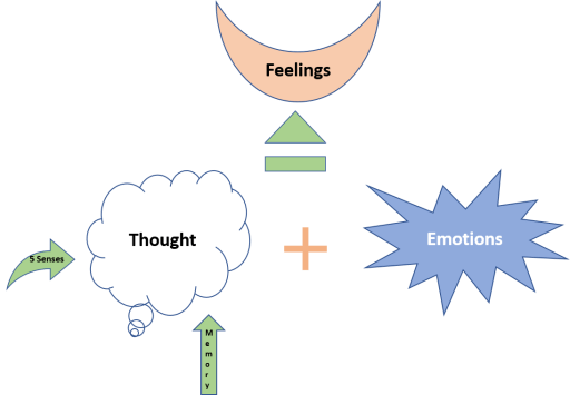 Thoughts, emotions and feelings: The Association