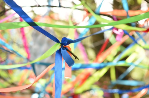ribbons in the forrest