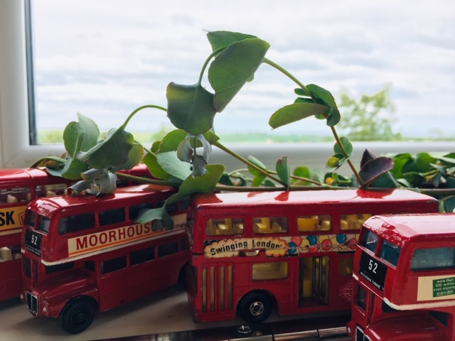 toy busses next to a window