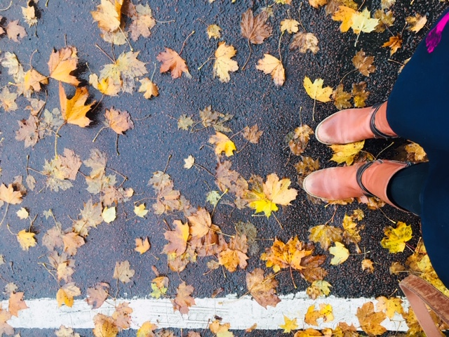 Autumn leaves and boots