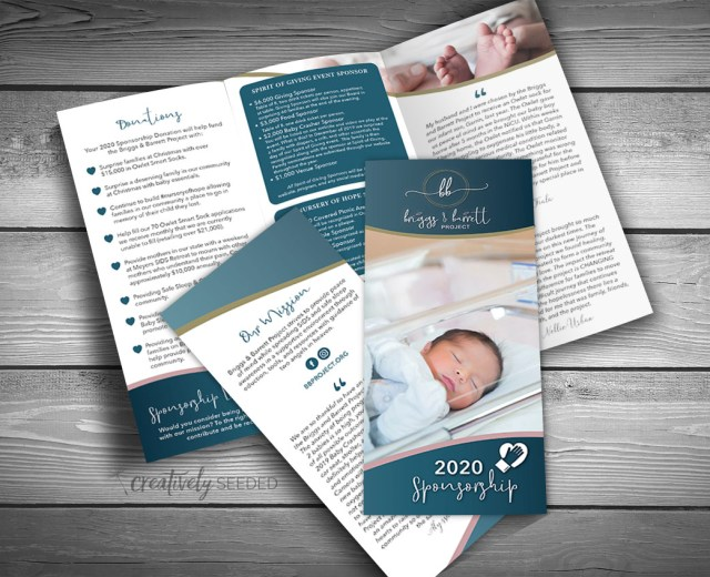 briggs and barritt project sponsorship brochure creatively seeded