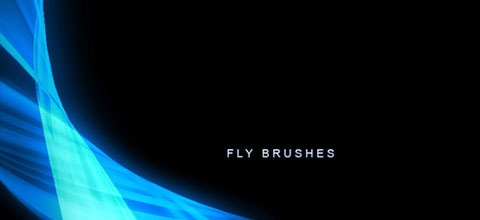 fly-brushes
