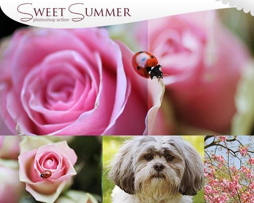 sweet-summer