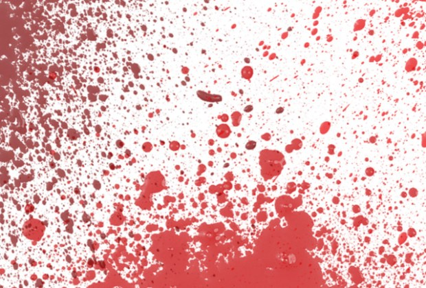 Blood splatter free Photoshop brush set | Creative Nerds