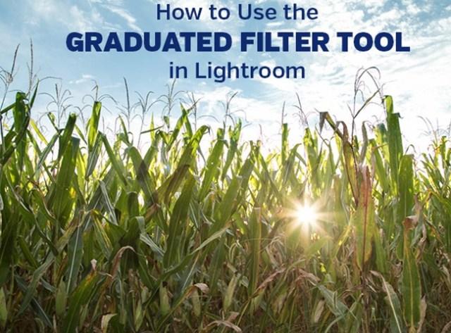 graduated-filter