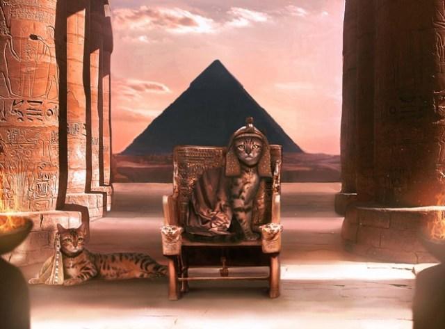 egypt-inspired-cat