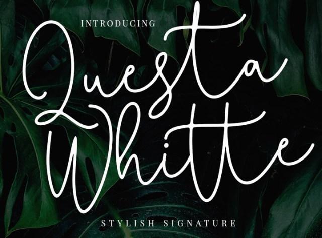 quest-white.jpg