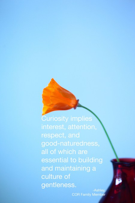 curiosity implies -cor