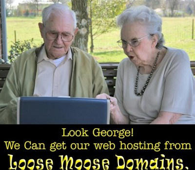 Ad Design-Loose Moose Domains-George